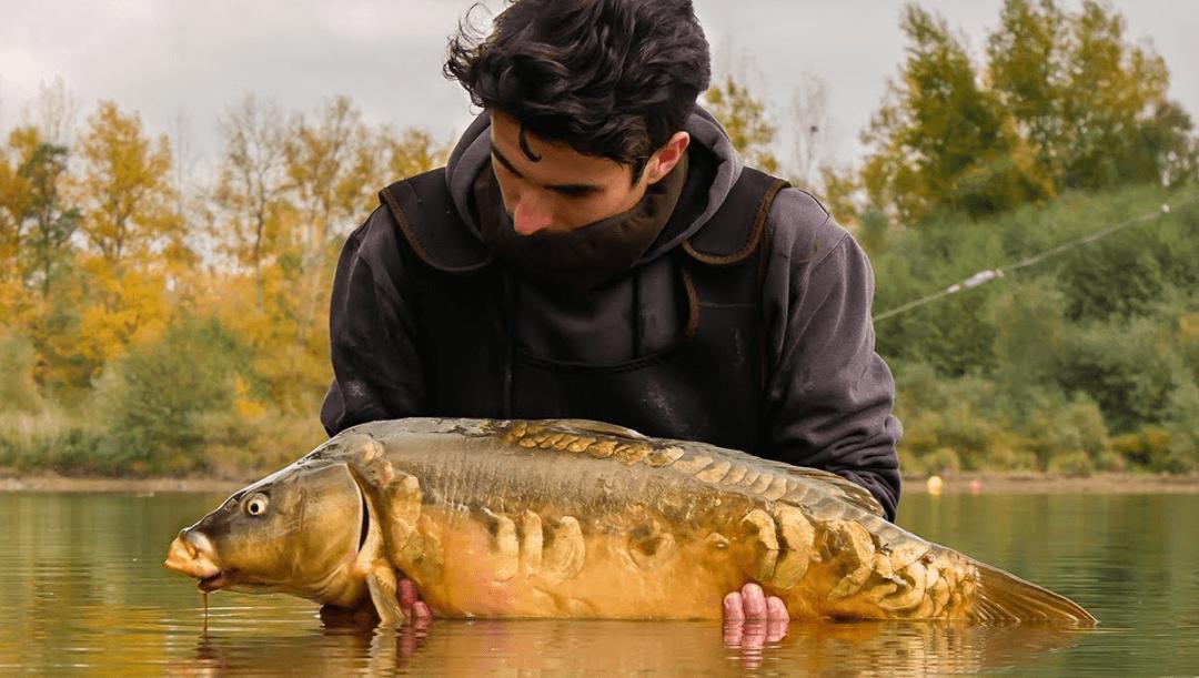 Avec quoi pêcher la carpe en etang photo